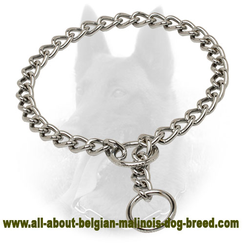 Strong Chrome Plated Steel Belgian Malinois Choke Collar - 1/9 inch (3 mm)