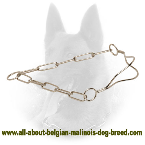 Quality Chrome Plated Belgian Malinois Show Collar