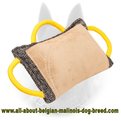 Advanced Belgian Malinois Bite Pad with Leather Area