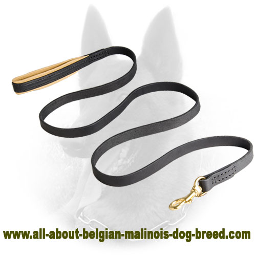 Extremely Opportune Leather Belgian Malinois Leash with Support Material on the Handle