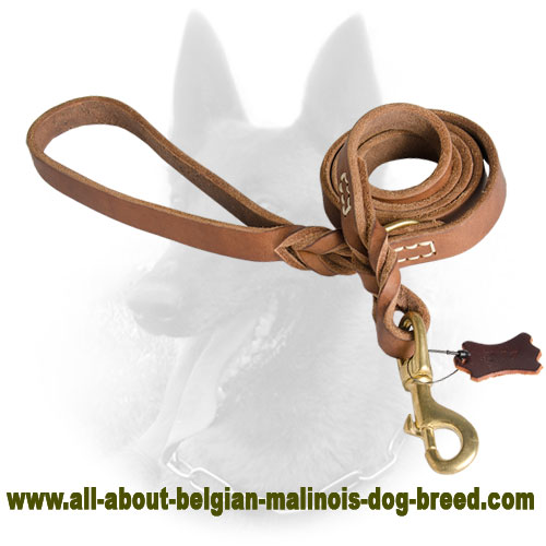 Upgraded Leather Leash for Professional Belgian Malinois Training