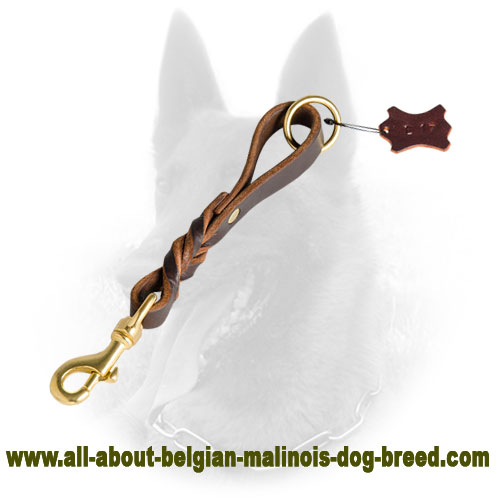 Short Belgian Malinois Leather Leash with Braided Decoration