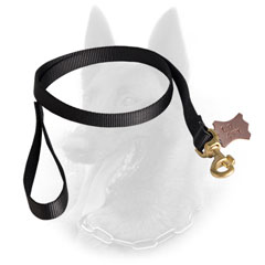 Perfect Belgian Malinois Leash for Wet Weather