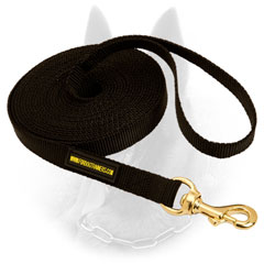 Practical Belgian Malinois Leash for Walking