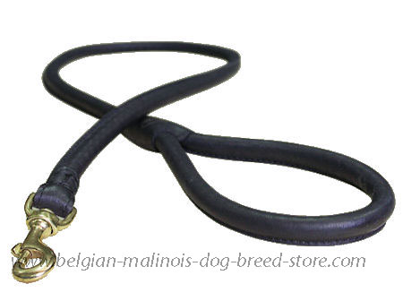 Matching Rolled Leather Dog Lead for Belgian Malinois