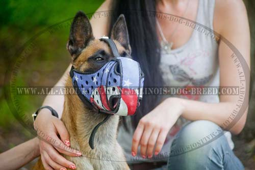 Gorgeous American Flag Painted Leather Belgian Malinois Muzzle