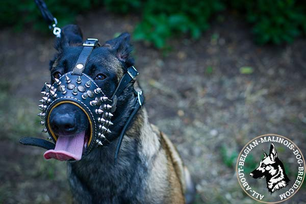 Easy to breathe Belgian Malinois leather muzzle