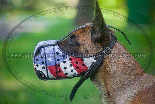 Hand Painted Leather Malinois Muzzle with Adjustable Straps